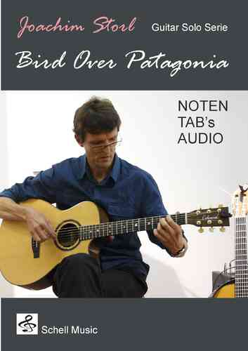 Guitar Solo! Bird Over Patagonia